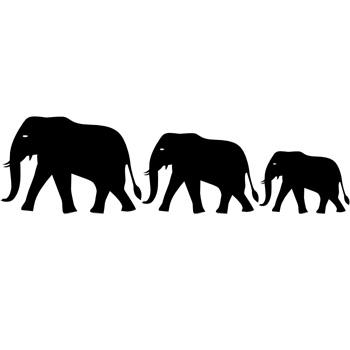Elephant-g_912