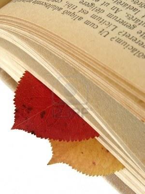 5192712-comme-les-feuilles-d-39-automne-des-signets-entre-les-pages-du-livre-avec-de-vieux-texte-latin