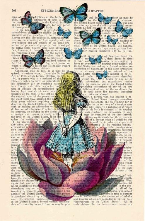 Alice-livre